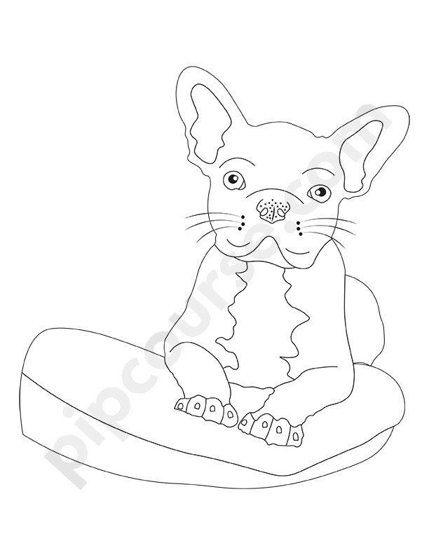 Man's Best Friend Dog Coloring Pack