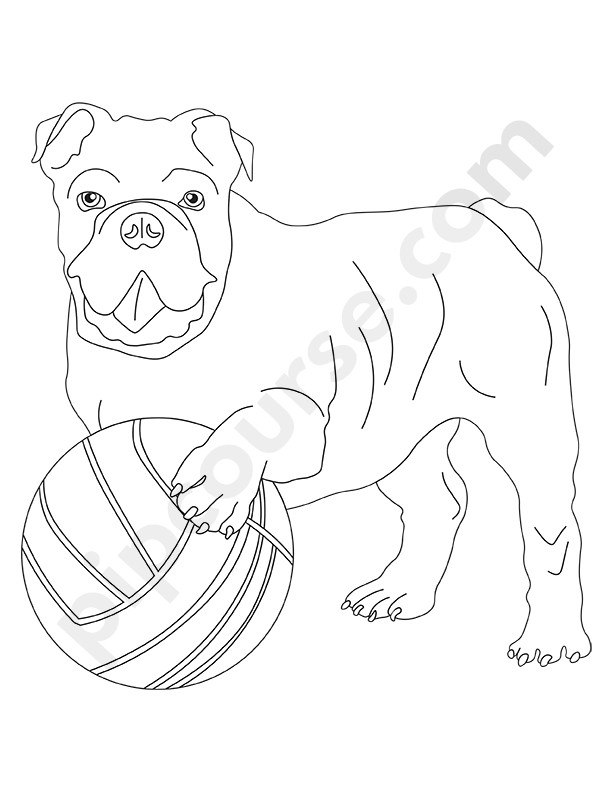 Mans Best Friend Dog Coloring Pack