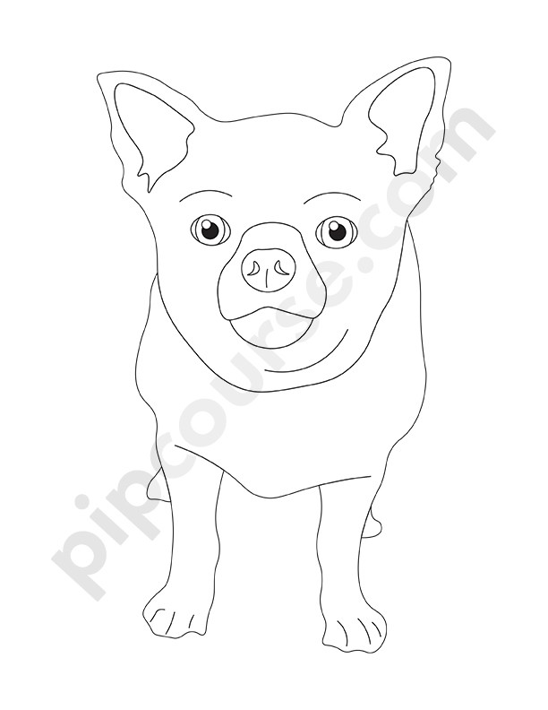 Coloring Book With Dogs for Adults